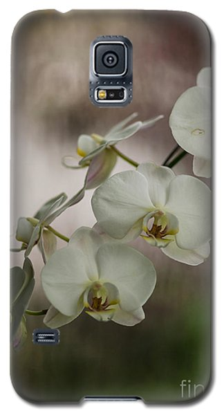 White Of The Evening Galaxy S5 Case by Mike Reid