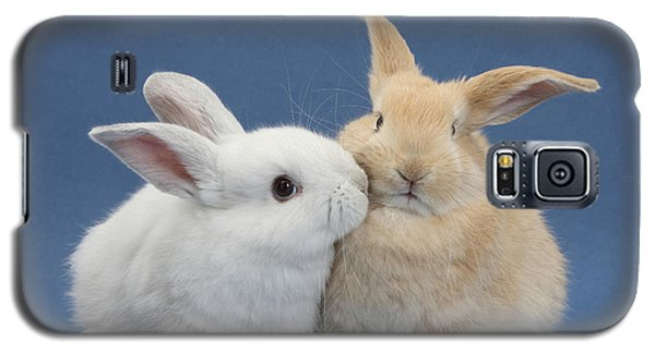 White Rabbit And Sandy Rabbit Galaxy S5 Case by Mark Taylor