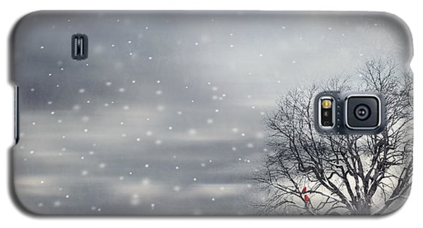 Winter Galaxy S5 Case by Lourry Legarde