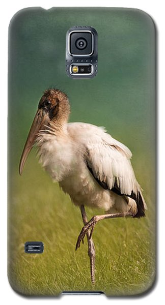 Wood Stork - Balancing Galaxy S5 Case by Kim Hojnacki