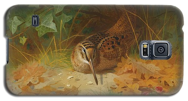 Woodcock Galaxy S5 Case by Celestial Images
