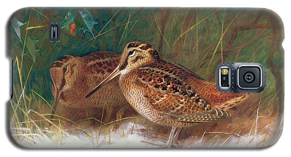 Woodcock In The Undergrowth Galaxy S5 Case by Archibald Thorburn
