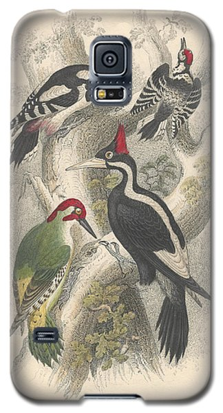 Woodpeckers Galaxy S5 Case by Oliver Goldsmith