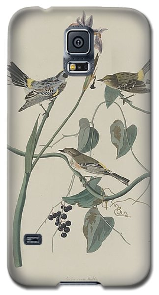 Yellow-crown Warbler Galaxy S5 Case by John James Audubon