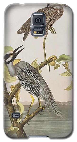 Yellow Crowned Heron Galaxy S5 Case by John James Audubon