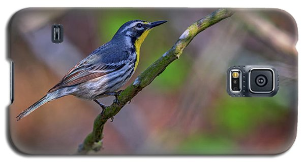Yellow-throated Warbler Galaxy S5 Case by Rick Berk