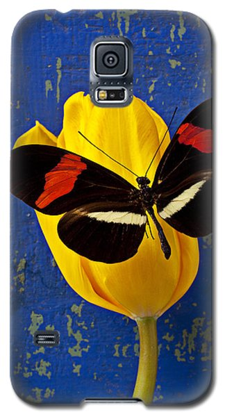 Yellow Tulip With Orange And Black Butterfly Galaxy S5 Case by Garry Gay