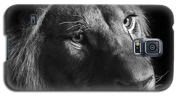 Young Lion In Black And White Galaxy S5 Case by Lukas Holas