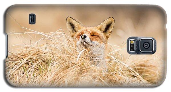 Zen Fox Series - Zen Fox 2.7 Galaxy S5 Case by Roeselien Raimond