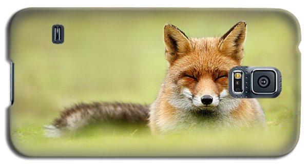 Zen Fox Series - Zen Fox In A Sea Of Green Galaxy S5 Case by Roeselien Raimond