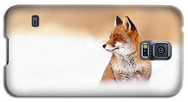 Zen Fox Series - Zen Fox In Winter Mood Galaxy S5 Case by Roeselien Raimond