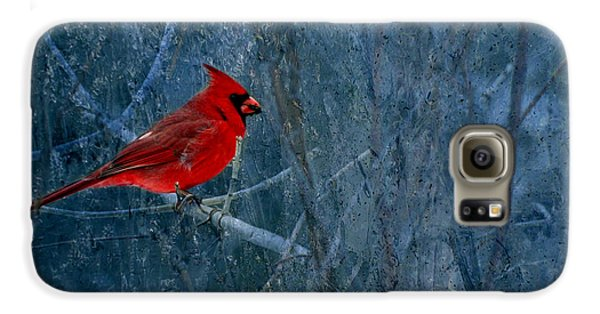 Northern Cardinal Galaxy S6 Case by Thomas Young