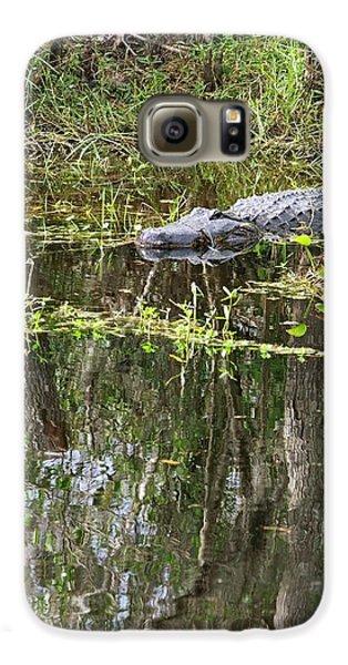 Alligator In Swamp Galaxy S6 Case by Jim West