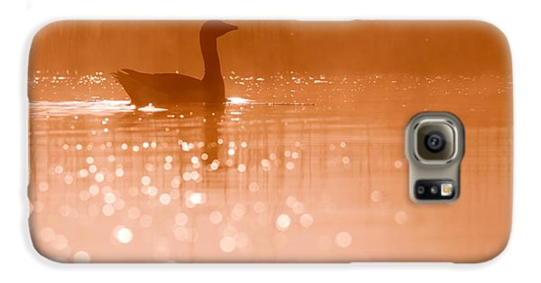 Early Morning Magic Galaxy S6 Case by Roeselien Raimond