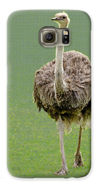 Emu Galaxy S6 Case by Ellen Henneke