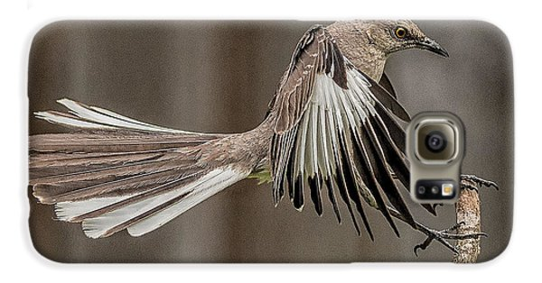 Mockingbird  Galaxy S6 Case by Rick Barnard