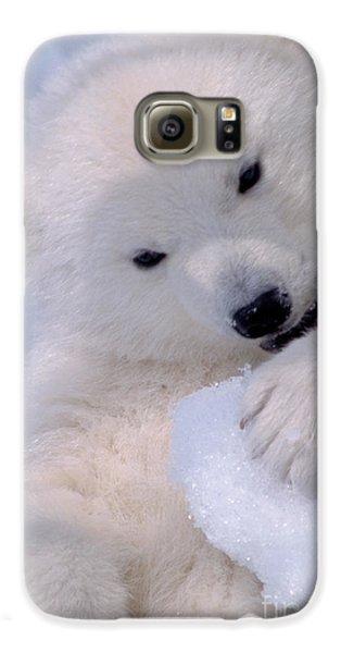 Polar Bear Cub Galaxy S6 Case by Mark Newman