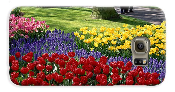 Keukenhof Garden, Lisse, The Netherlands Galaxy S6 Case by Panoramic Images