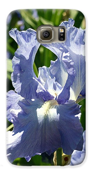 Purple Bearded Iris Galaxy S6 Case by Ellen Henneke