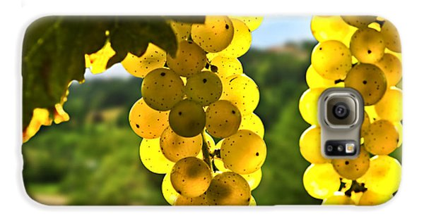 Yellow Grapes Galaxy S6 Case by Elena Elisseeva