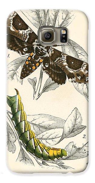 Butterflies Galaxy S6 Case by English School