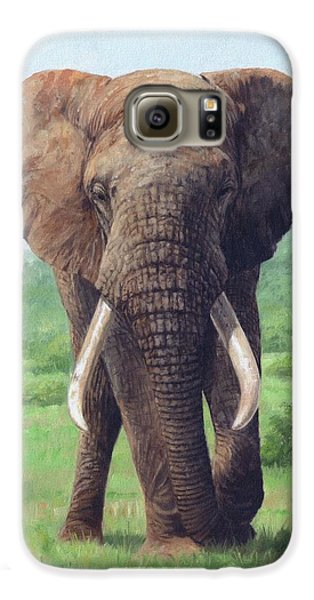 African Elephant Galaxy S6 Case by David Stribbling