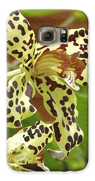 Leopard Orchids Galaxy S6 Case by Ellen Henneke