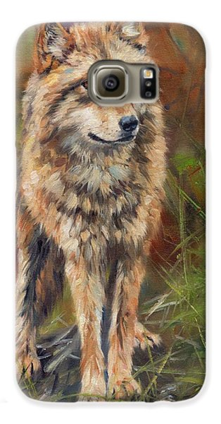 Grey Wolf Galaxy S6 Case by David Stribbling
