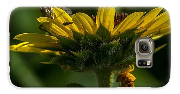 A Bugs World Galaxy S6 Case by Ernie Echols