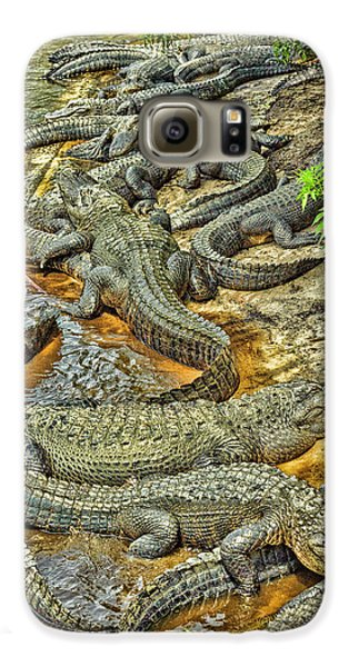 A Congregation Of Alligators Galaxy S6 Case by Rona Schwarz