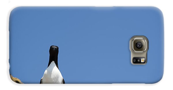 A Curious Bird Galaxy S6 Case by Anne Gilbert