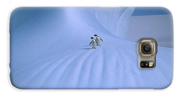 Adelie Penguins On Iceberg Antarctica Galaxy S6 Case by Peter Sinden