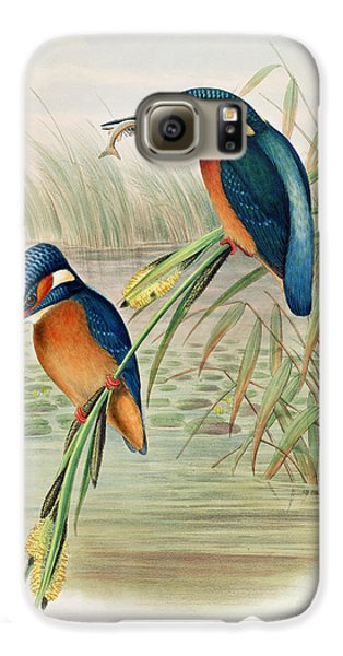 Alcedo Ispida Plate From The Birds Of Great Britain By John Gould Galaxy S6 Case by John Gould William Hart