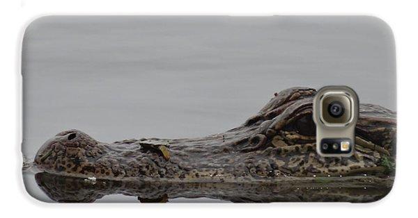 Alligator Eyes Galaxy S6 Case by Dan Sproul