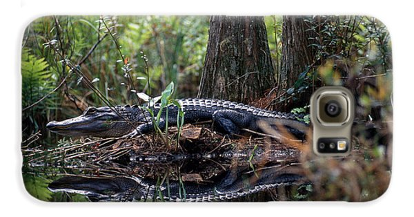Alligator In Okefenokee Swamp Galaxy S6 Case by William H. Mullins
