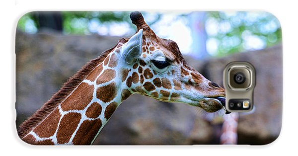 Animal - Giraffe - Sticking Out The Tounge Galaxy S6 Case by Paul Ward