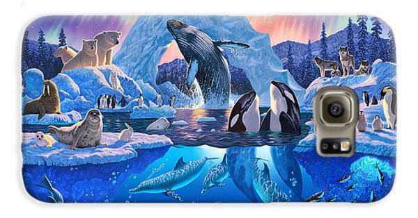 Arctic Harmony Galaxy S6 Case by Chris Heitt