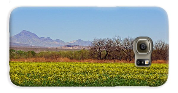 Arizona Spring Galaxy Case by Methune Hively