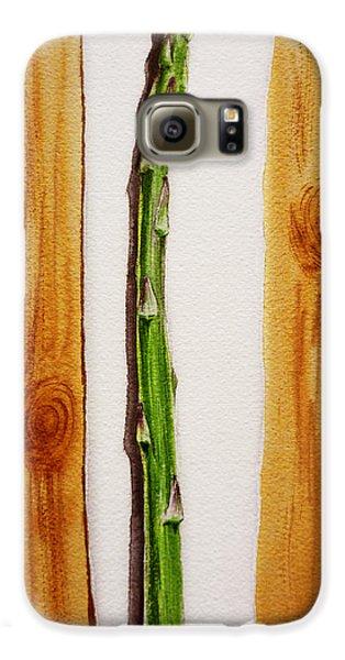 Asparagus Tasty Botanical Study Galaxy S6 Case by Irina Sztukowski