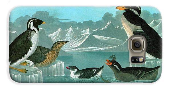 Audubon Auks Galaxy S6 Case by Granger