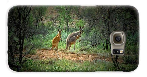 Australia, New South Wales, Broken Galaxy S6 Case by Rona Schwarz