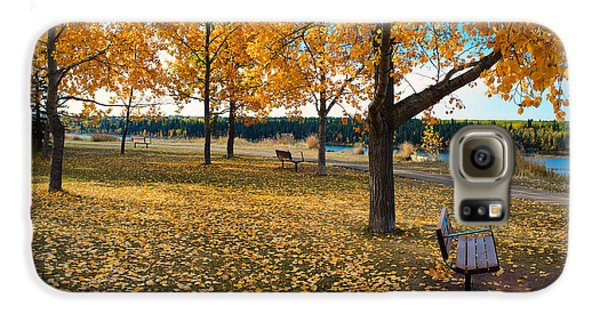 Autumn In Calgary Samsung Galaxy Case by Trever Miller