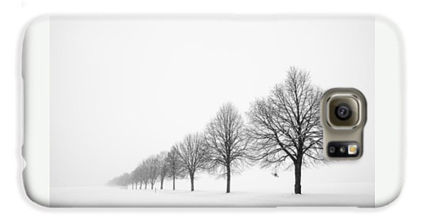 Avenue With Row Of Trees In Winter Samsung Galaxy Case by Matthias Hauser