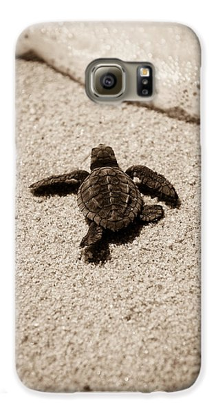 Baby Sea Turtle Galaxy S6 Case by Sebastian Musial