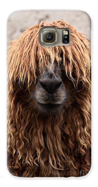 Bad Hair Day Galaxy S6 Case by James Brunker
