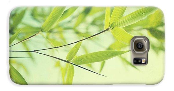 Bamboo In The Sun Galaxy S6 Case by Priska Wettstein