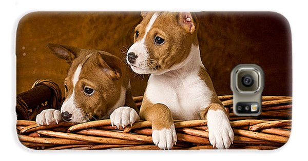 Basenji Puppies Galaxy S6 Case by Marvin Blaine