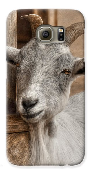 Billy Goat Galaxy S6 Case by Lori Deiter
