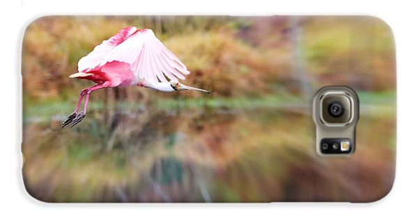 Birds Eye View Galaxy S6 Case by Carol Groenen