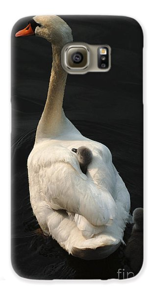Birds Of A Feather Stick Together Galaxy S6 Case by Bob Christopher